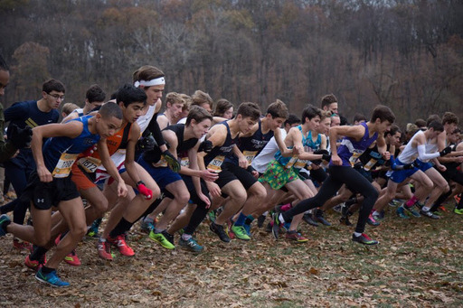 XC Ends Season on High Note