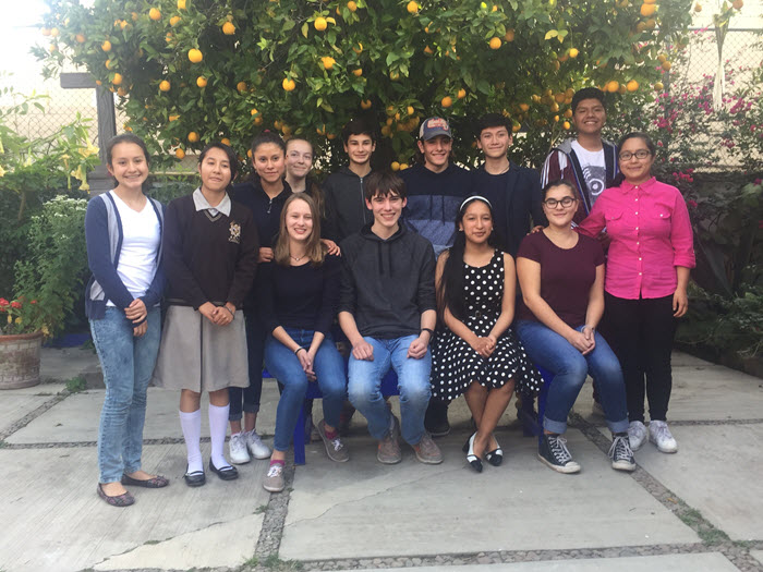 Two rows of students sitting in a courtyard under a citrus tree